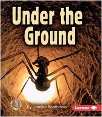 Cover: Under the Ground