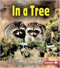 Cover: In a Tree