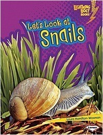 Cover: Let's Look at Snails