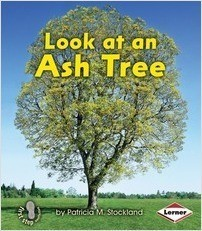 Cover: Look at an Ash Tree