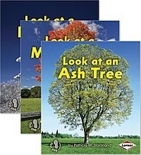 Cover: First Step Nonfiction — Look at Trees — eBook Set