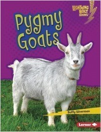 Cover: Pygmy Goats