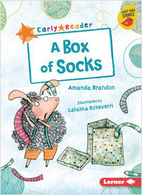 Cover: A Box of Socks