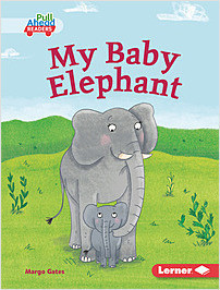 Cover: My Baby Elephant