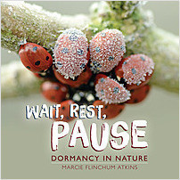 Cover: Wait, Rest, Pause: Dormancy in Nature