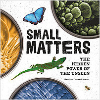Cover: Small Matters: The Hidden Power of the Unseen