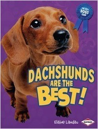 Cover: Dachshunds Are the Best!