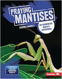 Cover: Praying Mantises: An Augmented Reality Experience