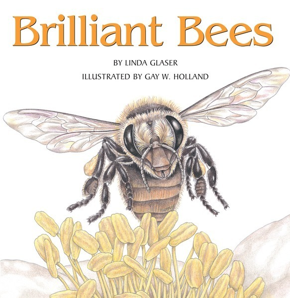 Brilliant Bees - Lerner Publishing Group