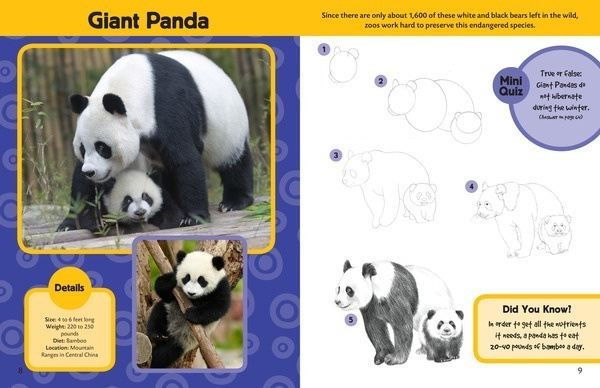 Learn to Draw Zoo Animals: Step-by-step - Lerner Publishing Group