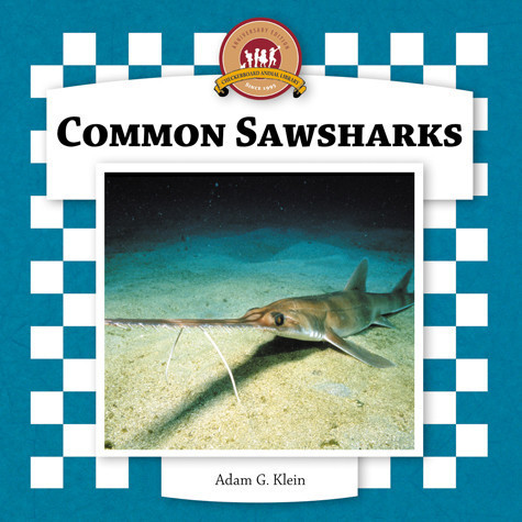 Cover: Common Sawsharks