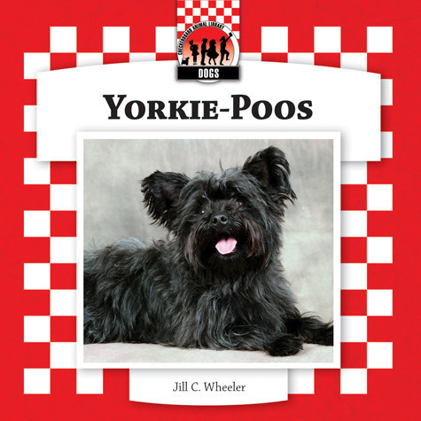Cover: Yorkie-Poos
