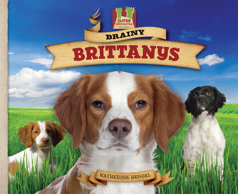Cover: Brainy Brittanys