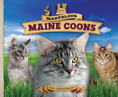Cover: Marvelous Maine Coons