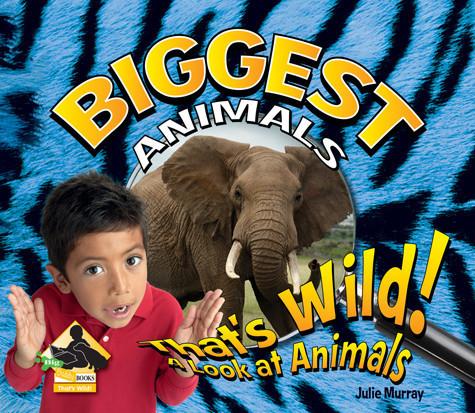 Cover: Biggest Animals