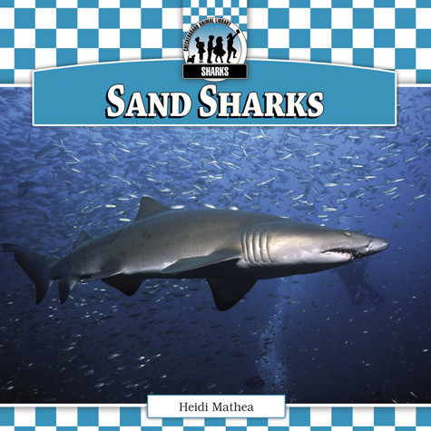 Cover: Sand Sharks