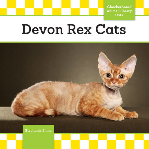 Cover: Devon Rex Cats
