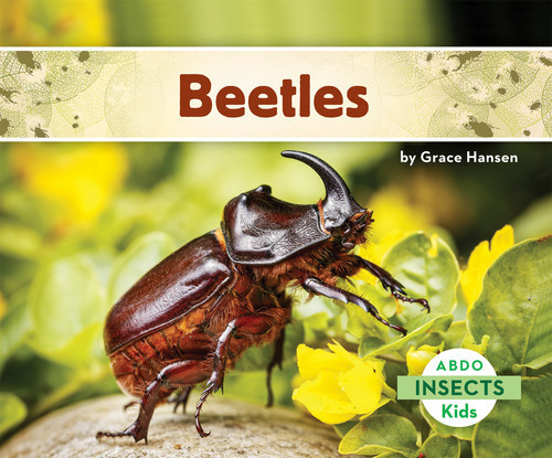 Cover: Beetles