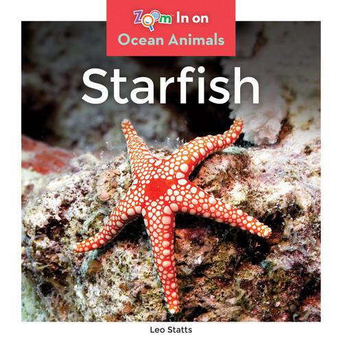 Cover: Starfish
