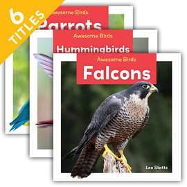 Cover: Awesome Birds