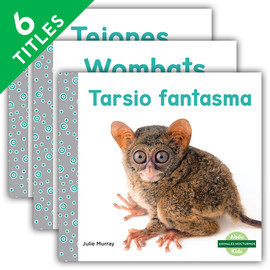 Cover: Animales nocturnos (Nocturnal Animals)