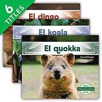 Cover: Animales de Australia (Australian Animals)