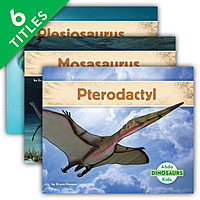 Cover: Dinosaurs Set 3