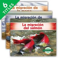 Cover: La migración animal (Animal Migration)