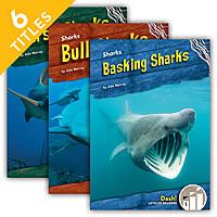 Cover: Sharks