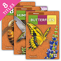 Cover: Pollinators