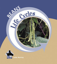 Cover: Beans