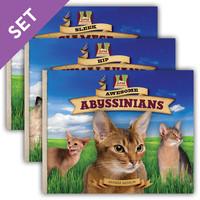 Cover: Cat Craze Set 1