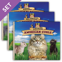 Cover: Cat Craze Set 2